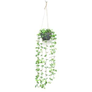 Mini Crabapple Hanging Potting with Paper Cone