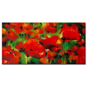 Canvas Print Meadow: Only poppy flowers