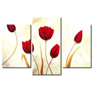 Canvas Print Tulips: Red tulips on white background