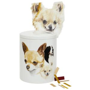 Surface 01 - Dogs Box by Domestic Multicoloured