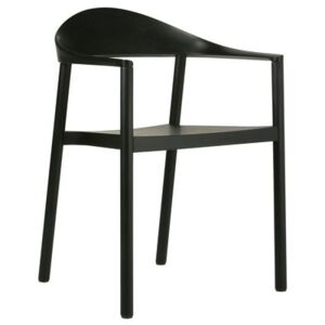 Monza Stackable armchair - Plastic & painted wood by Plank Black