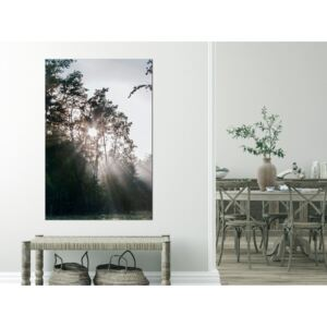 Canvas Print Trees: New Hope (1 Part) Vertical