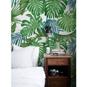 Wallpaper Charm Of Exotic Leaves