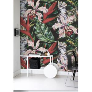 Wallpaper With The tropical Birds And Plants