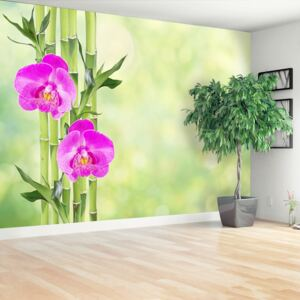 Wallpaper Orchid and bamboo 104x70 cm