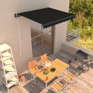 VidaXL Manual Retractable Awning 300x250 cm Anthracite