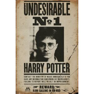 Poster HARRY POTTER - Undesirable n1, (61 x 91.5 cm)