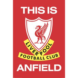 Poster Liverpool FC - This Is Anfield, (61 x 91.5 cm)