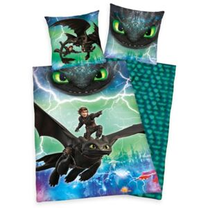 Bed sheets How To Train Your Dragon