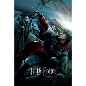 Art Poster Harry Potter - The Goblet of Fire - Harry