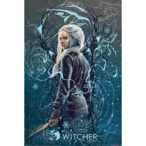 Poster The Witcher - Ciri the Swallow, (61 x 91.5 cm)