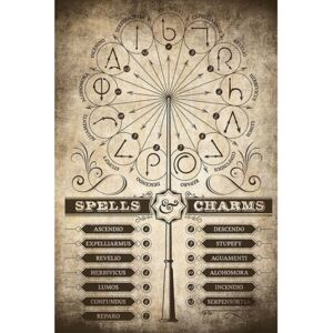 Poster Harry Potter - Spells and Charms, (61 x 91.5 cm)