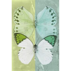 DUO FORMOIA - LIME GREEN & CORAL GREEN, (85 x 128 cm)