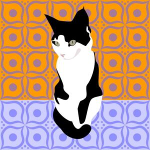 Huntley, Claire - Fine Art Print Cat on Morrocan Tiles