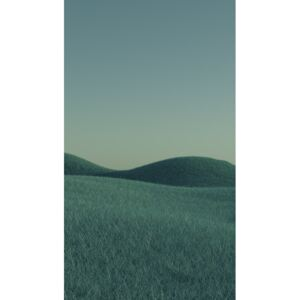 Art Photography Minimal landscpases of a green grass at with a gradient sky series 1, Javier Pardina