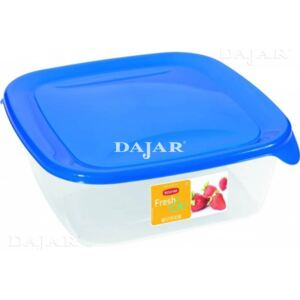 Square container for food storing FRESH&GO 1,7L
