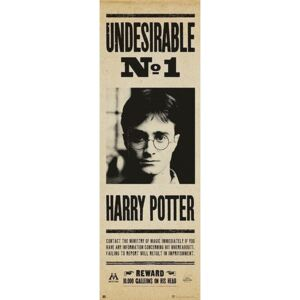 Poster Harry Potter - Undersirable no. 1, (53 x 158 cm)