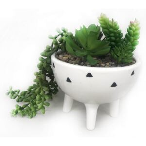 Trailing Plant in White Pot with Legs