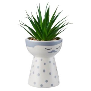 Daddy Planter with Succulent - Grey