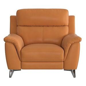 Contempo Leather Armchair