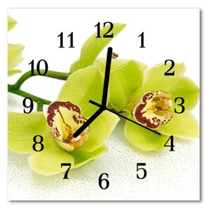 Glass Kitchen Clock Orchid flowers green 30x30 cm