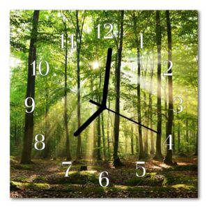 Glass Wall Clock Forest nature forest nature green 30x30 cm