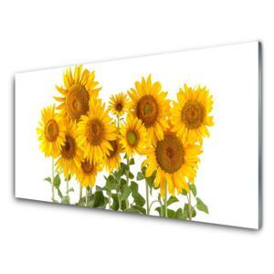 Acrylic Print Sunflowers floral yellow gold green 100x50 cm