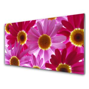 Acrylic Print Flowers floral pink yellow 100x50 cm