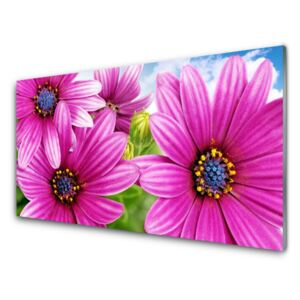 Acrylic Print Flowers floral pink yellow blue 100x50 cm
