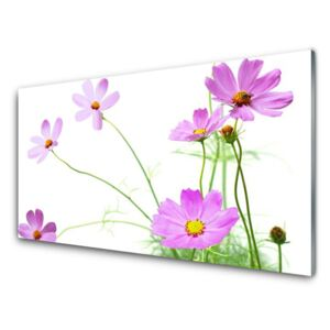Acrylic Print Flowers floral pink green 100x50 cm