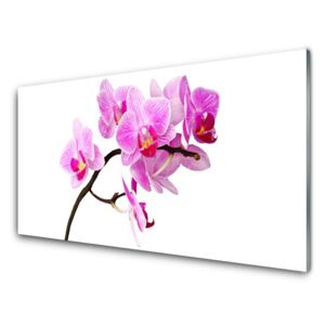 Acrylic Print Flowers floral pink brown 100x50 cm