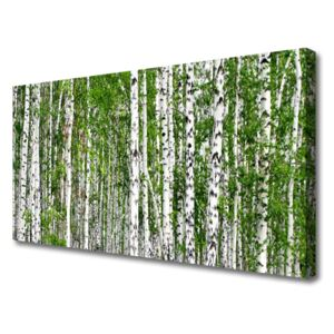 Canvas print Birch forest trees nature green white 100x50 cm