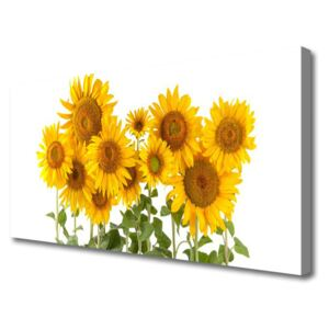 Canvas print Sunflowers floral yellow gold green 100x50 cm