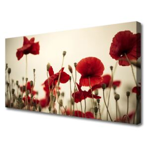 Canvas print Poppies floral red grey green 100x50 cm