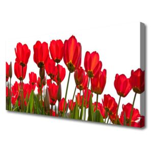 Canvas print Flowers floral red green white 100x50 cm