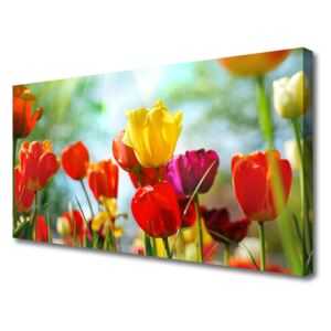Canvas print Flowers floral red yellow pink green 100x50 cm