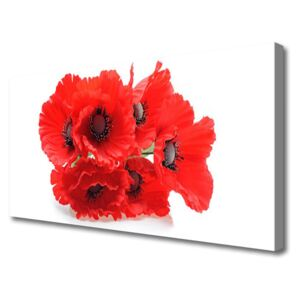 Canvas print Flowers floral red white 100x50 cm