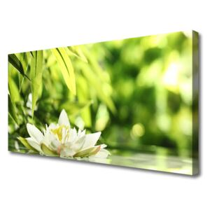 Canvas print Flower leaves floral white green yellow 100x50 cm