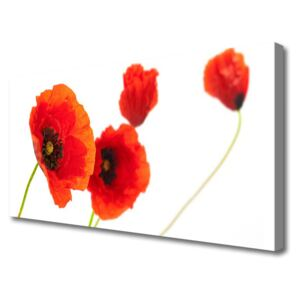 Canvas print Flowers floral red green 100x50 cm