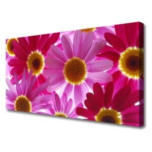 Canvas print Flowers floral pink yellow 100x50 cm