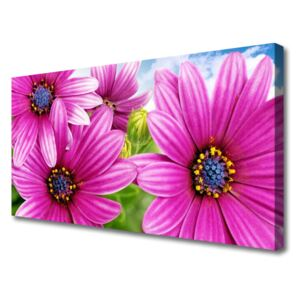 Canvas print Flowers floral pink yellow blue 100x50 cm