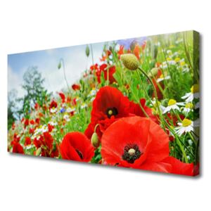 Canvas print Flowers nature red green 100x50 cm