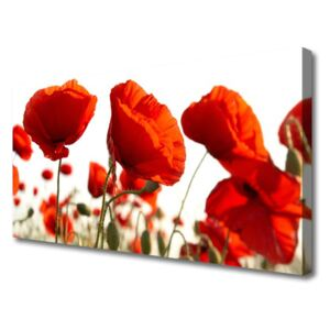 Canvas print Tulips floral red white 100x50 cm