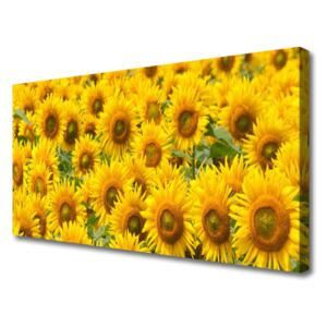 Canvas print Sunflowers floral yellow brown green 100x50 cm