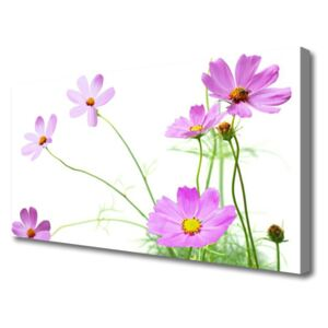 Canvas print Flowers floral pink green 100x50 cm