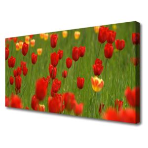 Canvas print Tulips nature brown yellow green 100x50 cm