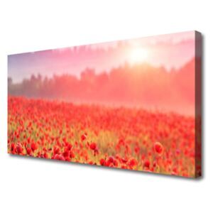 Canvas print Meadow flowers nature red green 100x50 cm