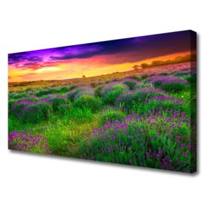 Canvas print Meadow nature pink purple green yellow 100x50 cm