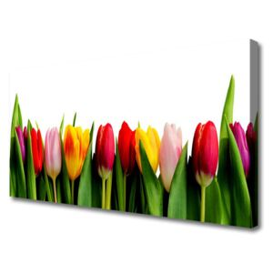 Canvas print Tulips floral red pink yellow green 100x50 cm