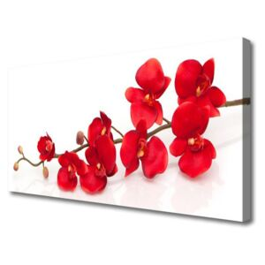 Canvas print Flowers floral red 100x50 cm